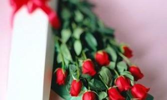 Квіти в подарунок нашим милим дамам