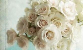 Як зберігати троянди у вазі: кілька порад