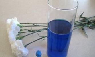 Як пофарбувати квіти і зробити оригінальний букет
