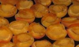 Як правильно сушити абрикоси?