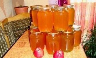 Рецепти соків на зиму: яблучний, виноградний, сливовий, жимолості, шипшини і морквяного