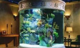 Догляд за акваріумом з рибками