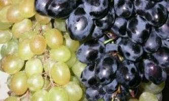 У чому користь винограду, а в чому шкода