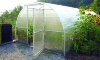 Вирощування, сорти огірків в опалювальній теплиці взимку